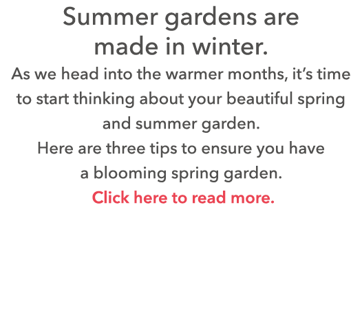 Summer gardens are made in winter  As we head into the warmer months, it s time to start thinking about your beautifu